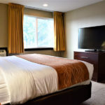 comfort inn beaverton king bedroom with TV